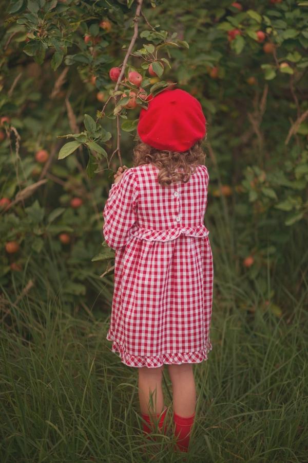 red tulip (1)